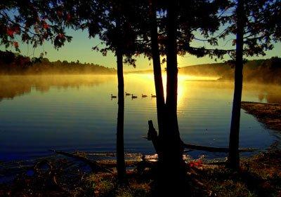Honorable Mention, Lake/Landscape