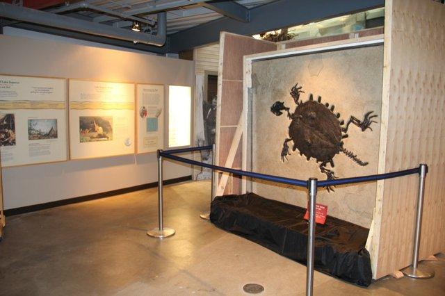 Great Lakes Aquarium's New Exhibit