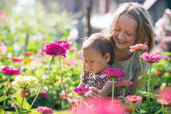 Glensheen Flowers