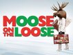 """""""Moose on the Loose"""""""