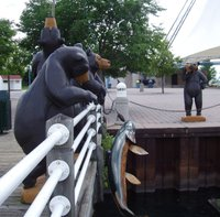 Bears at Roberta Bondar Pavilion, Sault Ste. Marie