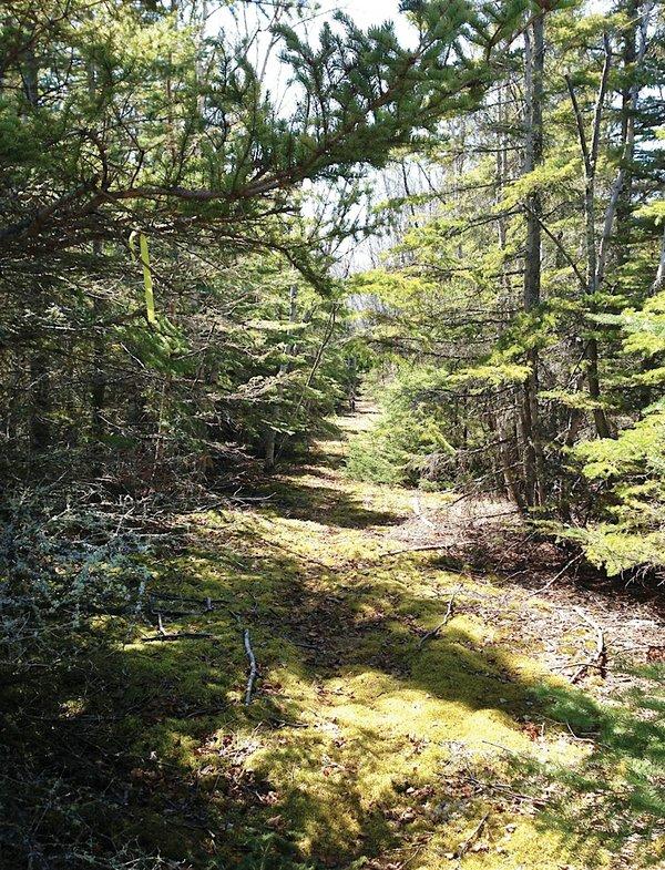 Rossport Coastal Trail