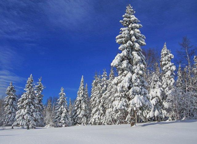Grand Marais After Snow
