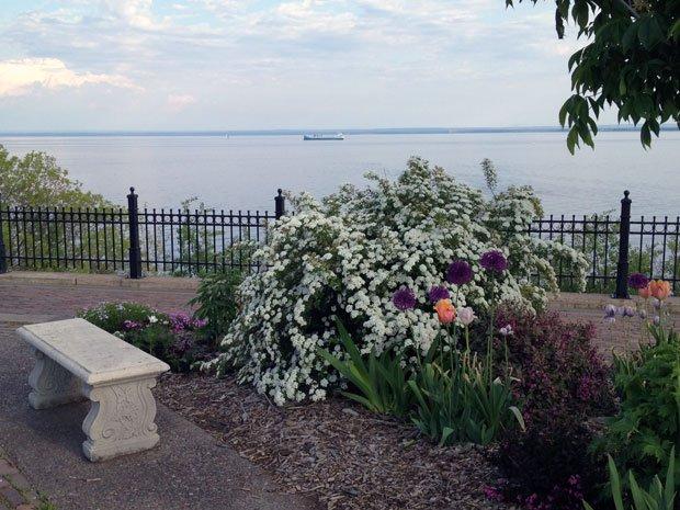 Visit Duluth - Duluth Rose Garden