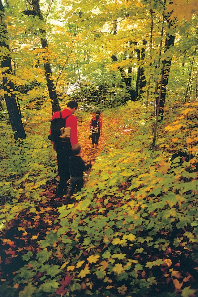 Fabulous Fall Hikes