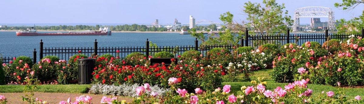 How Duluth Winterizes Its Rose Garden Lake Superior Magazine