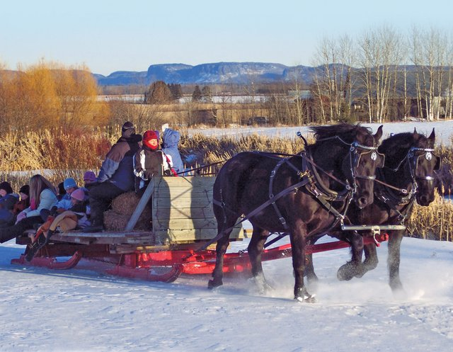 Take a Sleigh Ride at Gammondale Farm