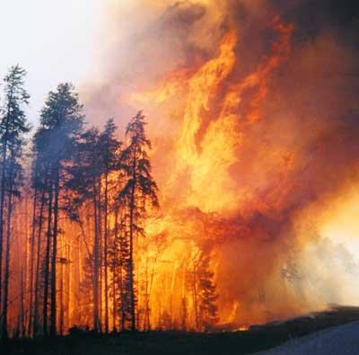 223firestorm
