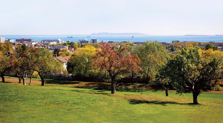 Above It All, Sunken Gardens, Harbor Vistas – You Gotta Love ...