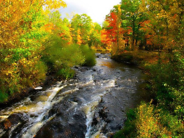 Ironwood Chamber – Fishing Streams