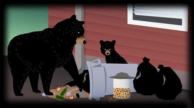 ATCTW061419.bear.1240.jpg
